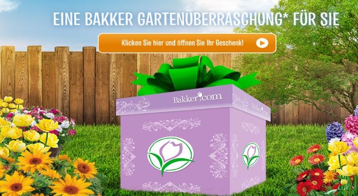 Bakker Holland Geschenk