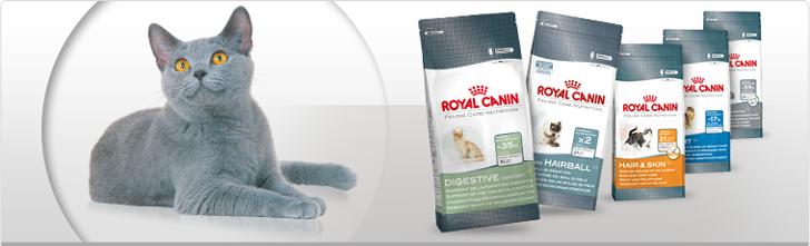 Royal-Canin-Katzenfutter