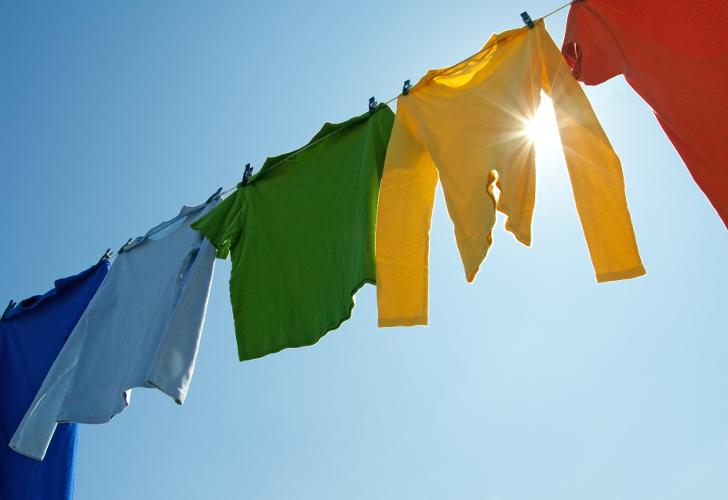 textilreinigung waesche kostenlose abholung