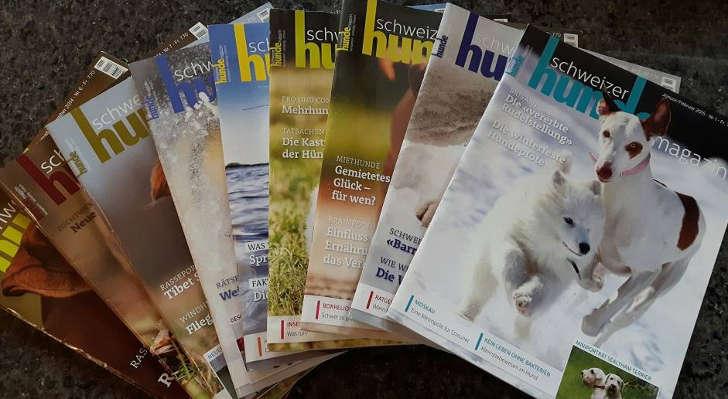 schweizer-hunde-magazin-gratisheft