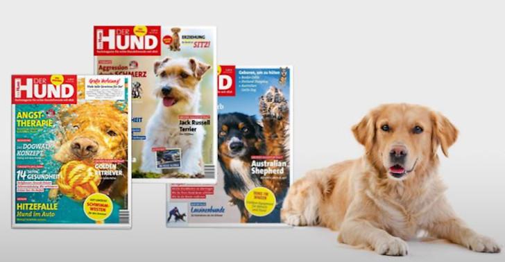 Der Hund Zeitschrift