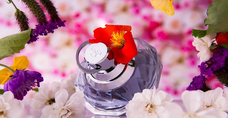 Super Shop Gratis Parfüm Parfum Angebote