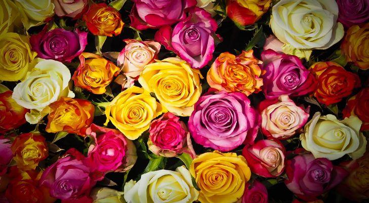 Valentins Blumen Muttertag