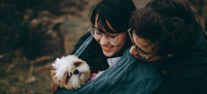 Hunde singlebörse kostenlos